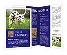 0000075221 Brochure Template
