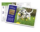 0000075221 Postcard Templates