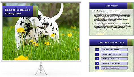 0000075221 PowerPoint Template