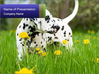 0000075221 PowerPoint Templates - Slide 1