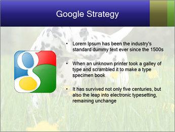 0000075221 PowerPoint Templates - Slide 10