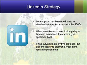 0000075221 PowerPoint Templates - Slide 12