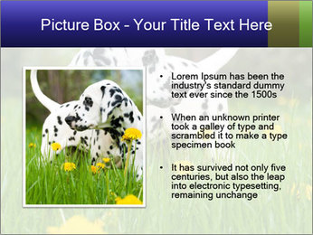 0000075221 PowerPoint Template - Slide 13