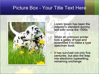 0000075221 PowerPoint Templates - Slide 13