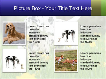 0000075221 PowerPoint Templates - Slide 14