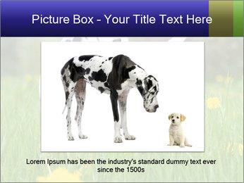 0000075221 PowerPoint Templates - Slide 15