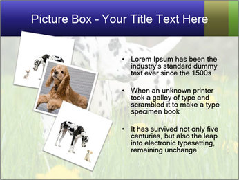 0000075221 PowerPoint Template - Slide 17