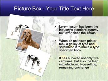 0000075221 PowerPoint Templates - Slide 17