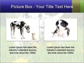 0000075221 PowerPoint Templates - Slide 18