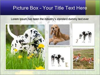 0000075221 PowerPoint Templates - Slide 19