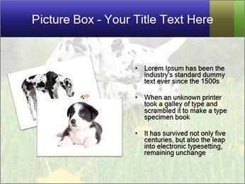 0000075221 PowerPoint Templates - Slide 20