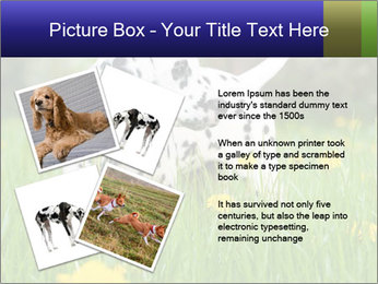 0000075221 PowerPoint Template - Slide 23