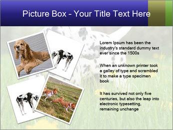 0000075221 PowerPoint Templates - Slide 23