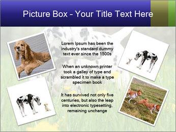 0000075221 PowerPoint Templates - Slide 24