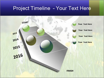 0000075221 PowerPoint Templates - Slide 26