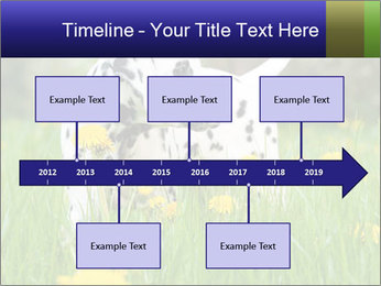 0000075221 PowerPoint Template - Slide 28
