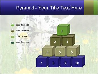 0000075221 PowerPoint Templates - Slide 31