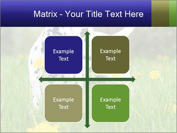 0000075221 PowerPoint Templates - Slide 37