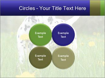 0000075221 PowerPoint Templates - Slide 38
