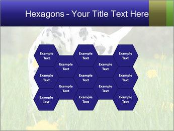 0000075221 PowerPoint Templates - Slide 44