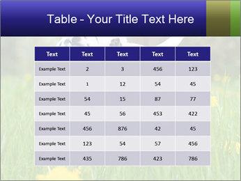 0000075221 PowerPoint Templates - Slide 55