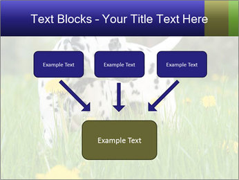 0000075221 PowerPoint Templates - Slide 70