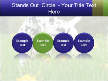 0000075221 PowerPoint Template - Slide 76