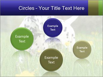 0000075221 PowerPoint Templates - Slide 77
