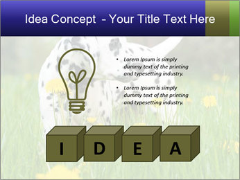 0000075221 PowerPoint Template - Slide 80