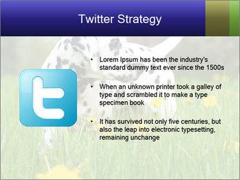 0000075221 PowerPoint Templates - Slide 9