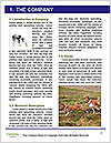0000075221 Word Template - Page 3