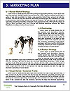 0000075221 Word Template - Page 8