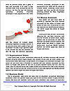 0000075223 Word Template - Page 4
