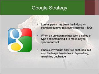 0000075237 PowerPoint Templates - Slide 10