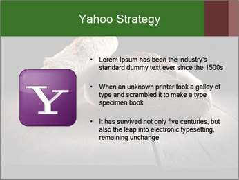 0000075237 PowerPoint Templates - Slide 11