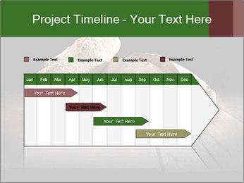 0000075237 PowerPoint Templates - Slide 25