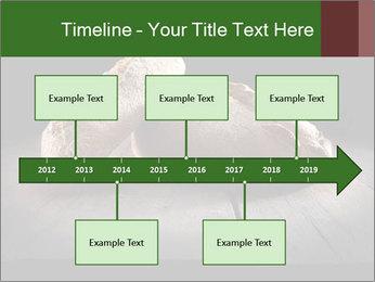 0000075237 PowerPoint Templates - Slide 28