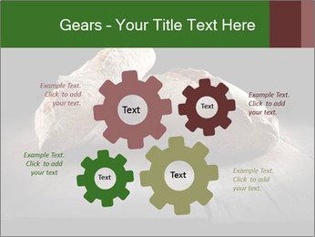 0000075237 PowerPoint Templates - Slide 47