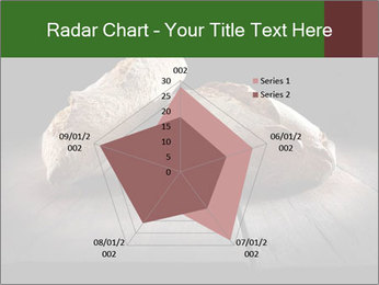 0000075237 PowerPoint Templates - Slide 51