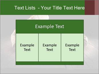 0000075237 PowerPoint Templates - Slide 59