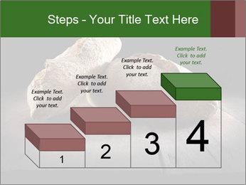 0000075237 PowerPoint Templates - Slide 64
