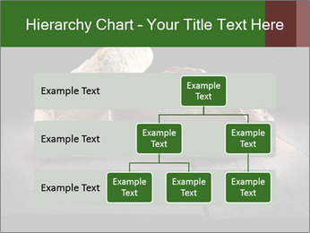 0000075237 PowerPoint Templates - Slide 67