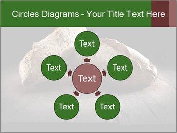 0000075237 PowerPoint Templates - Slide 78