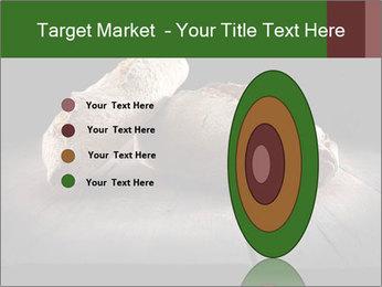 0000075237 PowerPoint Templates - Slide 84