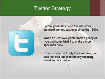 0000075237 PowerPoint Templates - Slide 9