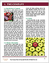 0000075260 Word Template - Page 3