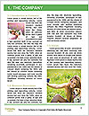 0000075263 Word Template - Page 3