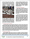 0000075267 Word Templates - Page 4