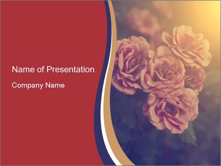 0000075279 PowerPoint Templates