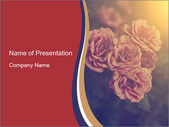 0000075279 PowerPoint Template - Slide 1